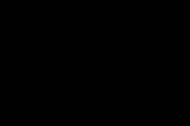 Raider Athletics 1 color logo