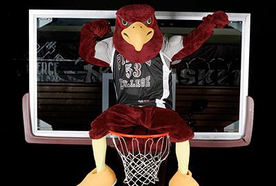 now hiring pierce college raider bird mascot pierce college district