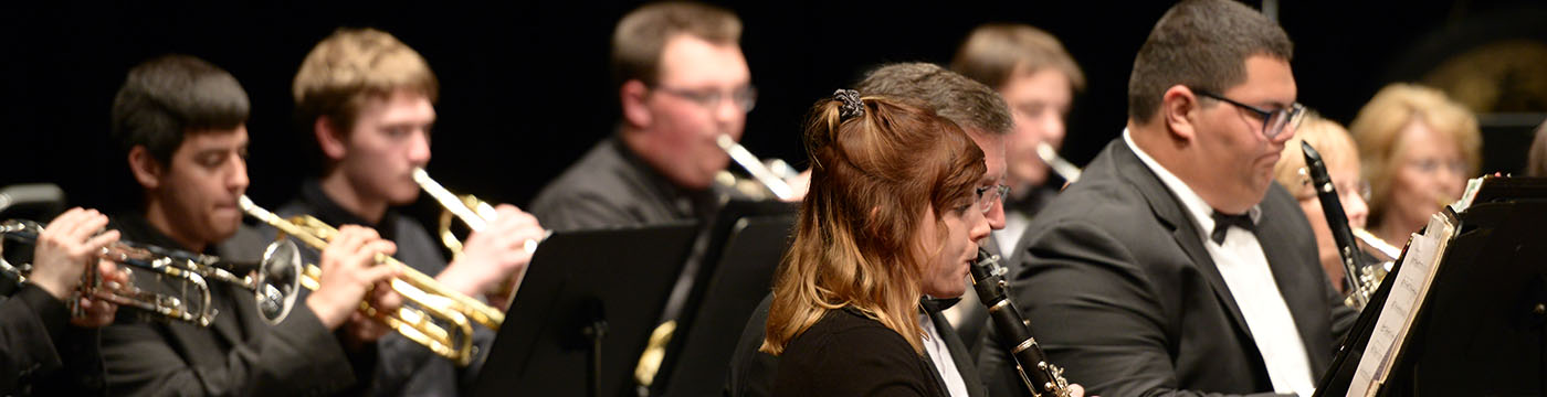 brass and woodwind players during a performance