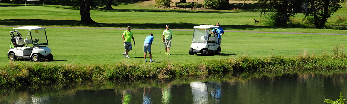 golfers on grassy course standing next to golf carts