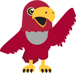 illustration of the red pierce college raider bird