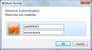 network authentication window